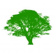 Для крупномерных деревьев