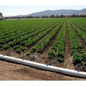 Сельхоз орошение