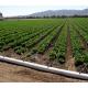 Сельскохозяйственное орошение